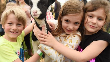 A two-weeks-old Jacob lamb from the Stody Estate, gets a cuddle from Taverham friends at the Spring