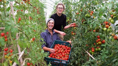 The successful FarmShare venture next to Postwick Park & Ride. Growers Rosalind Bacon, right, and Em