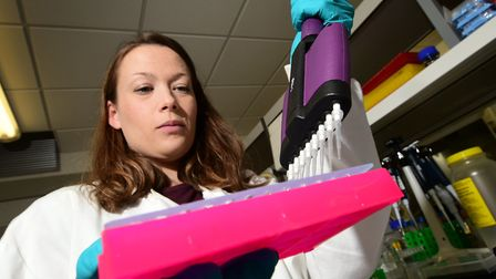 John Innes Centre pea research. Research assistant Emily Jones in the lab. Picture: ANTONY KELLY