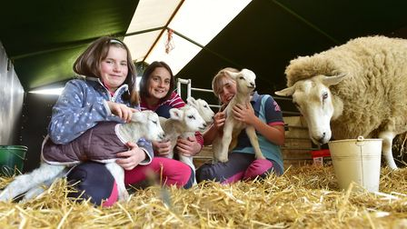 Clare Armstrong with her daughters Ruby and Isabel and the quadruplet lambs.
