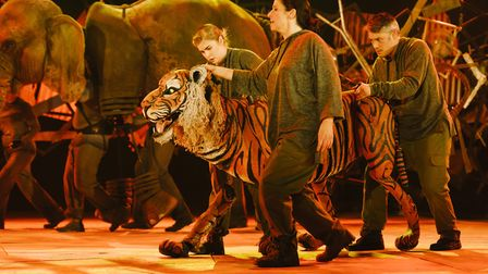 Running Wild, presented by the Children's Touring Partnership, is coming to Norwich Theatre Royal fr