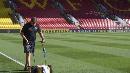 A groundsman marking out the pitch at Watford FC Picture: Alan Cozzi