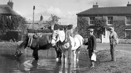 Horses drinking at the village pond. Picture: Archant Library