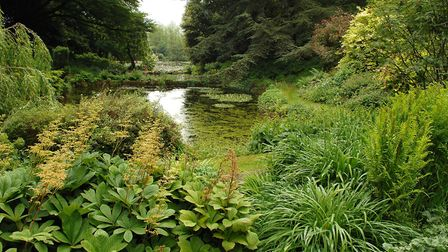 View of the garden at Lake House in Brundall. Picture: James Bass .