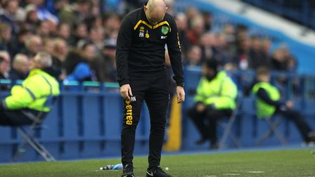 Alex Neil is looking to get back into football after his Norwich City exit. Picture: Paul Chesterto
