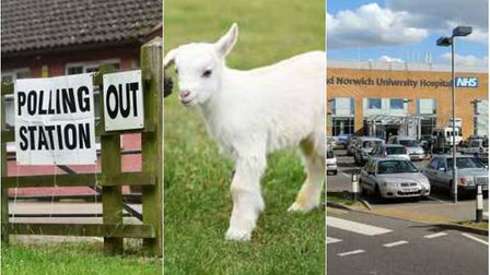 Six weird and wonderful things that have happened in elections gone by across the region.