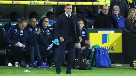 Brighton manager Chris Hughton cut a frustrated figure at Carrow Road. Picture: Paul Chesterton/Foc