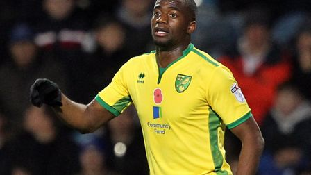 Sebastien Bassong is among seven high-earning players whose contracts will not be renewed at Norwich