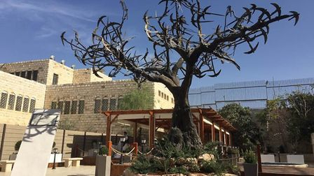 The Tree of Hope, by Suffolk sculptor Mark Coreth, stands in the garden of the Muristan Clinic in Je