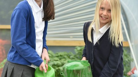 Ashleigh Primary School has its own farm on the school grounds. Pictured, Isla Wade and Katie Woodoc