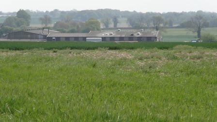 The site of Norfolk Meat Traders at the Moor, Banham. Picture: Archant