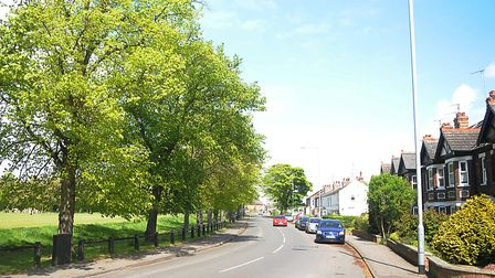 Tennyson Avenue, where residents are complaining about lorries breaking an HGV ban. Picture: Chris B