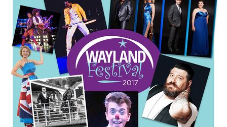 The Wayland Festival 2017. Picture: Wayland Festival