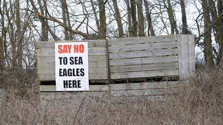 A 'Say No to Sea Eagles' sign put up by farmers in Suffolk in 2010. Picture: Sarah Lucy Brown