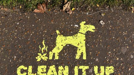 Message to dog owners. Clean it Up slogan on the pavement in Gorleston. Picture: James Bass