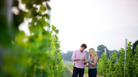 Ben and Hannah Witchell have just released the first wines from Flint, based at Earsham. Pictures: F