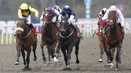 Realize, pictured far left with his jockey in yellow, goes in the 4.30pm feature race at Great Yarmo