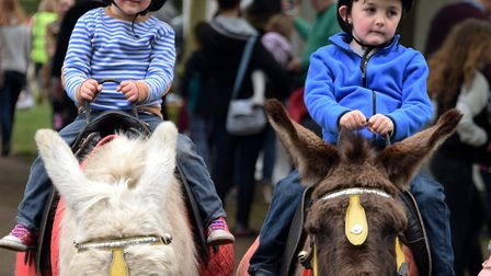 Brothers Raiph, left, aged three, and Zachary Maddison, five, ride the donkeys from Parkers Donkey W