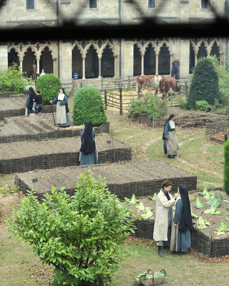 Autumn comes in June to the Norwich cathedral cloister for the final day of filming Tulip Fever. Pho
