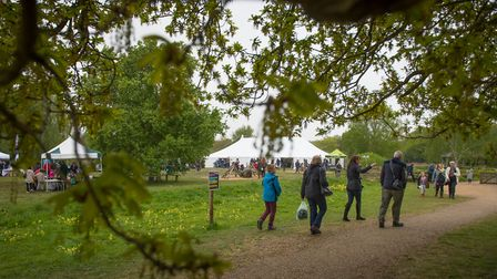 The Wild about the Wensum family event at Pensthorpe Natural Park. Photo : Steve Adams