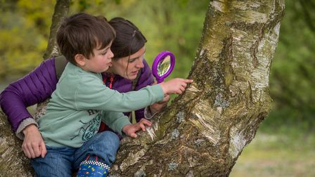 The Wild about the Wensum family event at Pensthorpe Natural Park. Special guest Jess French hunting