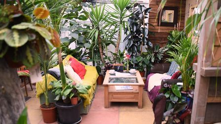 Secluded and hidden away tables in the Urban Jungle garden centre café, at Old Costessey. Picture: D