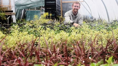 Jamie Spooner, operations manager, at work in the propagation tunnel at the Urban Jungle garden cent