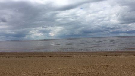 Dead seal pups have washed up on beaches in Heacham and Hunstanton. Phone Steve Shaw