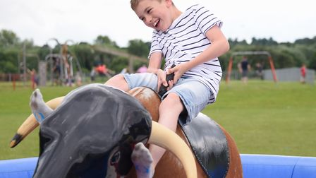 Tyler Kemp, 10, tries to stay on the rodeo bull at the 2016 Mile Cross Community Festival. Picture: