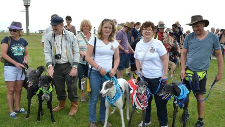 Dogs and owners take part in the Great British Greyhound Walk 2014 at Pakefield. Organiser Becky Car