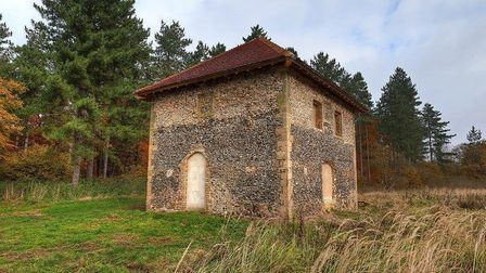 Friends of Thetford Forest has cared for Mildenhall Warren Lodge since 2000 and has raised £130,000