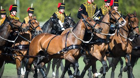 The King's Troop will perform at the 2017 Royal Norfolk Show - their only appearance outside London