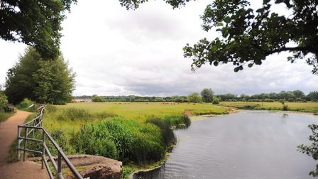 The water meadows in Sudbury. Picture: GREGG BROWN