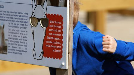 Summer holiday club is back at Redwings Horse Sanctuary. Learn why residents wear visors and see wh