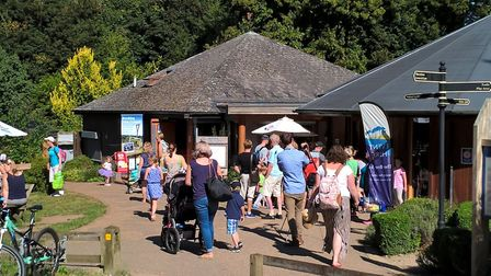 Brandon Country Park will be hosting Folk Fest. Picture: Archant Library
