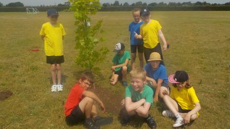 Pupils at Holly Meadow School in King's Lynn planting their new trees. Picture: Hannah Gentle