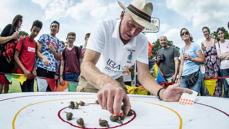 Action from the 2015 World Championship Snail Racing at Congham - Snail Master Neil Riseborough Pict