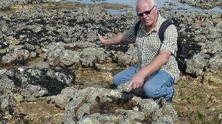 Russell Yeomans on the sponge reef at West Runton.
