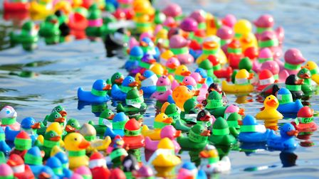 Action from last year's Beccles Duck Race. Picture: Nick Butcher.
