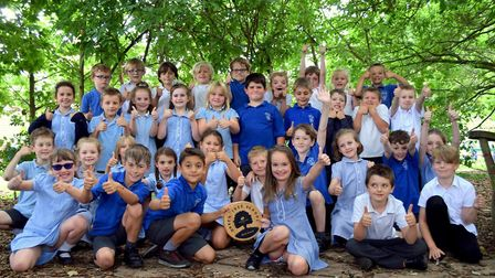 Pupils from Hingham Primary School's Kingfisher and Fox classes celebrate the gold award. Picture: J