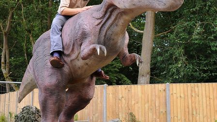 Adam Goymour, park manager, with the animatronic T-Rex at the Dinosaur Adventure Park, Lenwade. Pict
