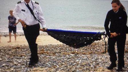 A seal pup was rescued on Caister beach. Photo: Caister Coastwatch