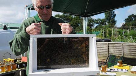 A bee-keeping demonstration at Hunstanton Allotments open day. Picture: Chris Bishop