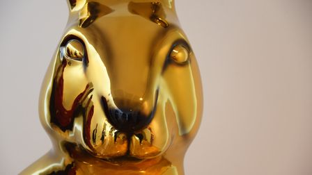 The first decorated GoGoHare, Osc-hare is revealed. Picture: DENISE BRADLEY