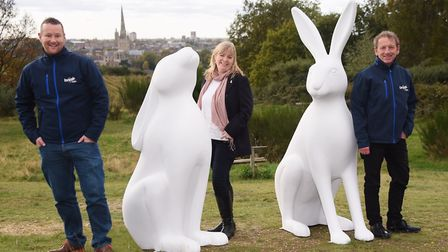 The GoGoHares! sculptures have arrived in Norwich ready to be decorated as part of the 2018 open art