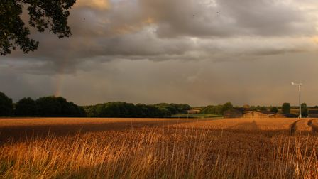 Caught in the storm whilst out walking. Picture: Rod Skeggs