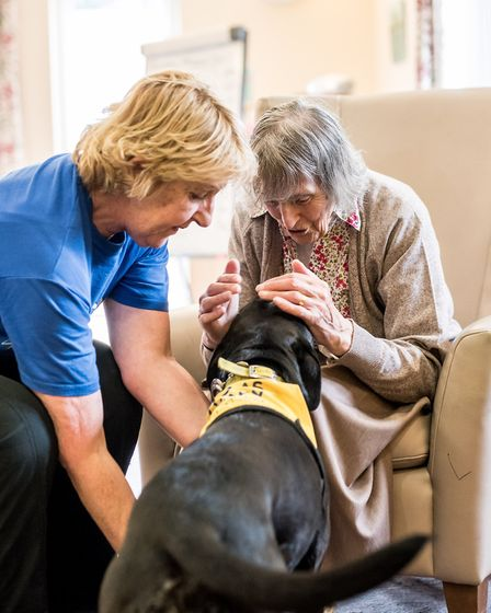 Inca is a Pets as Therapy (PAT) dog who, together with her owner Sheena Scrimgeour, is a regular vis