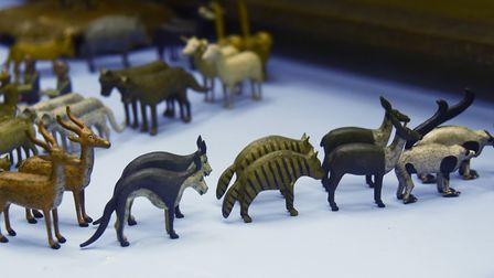 The animals with the 19th century Noah's Ark in the toy room at Stranger's Hall which inspired Vanes