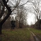 Picture of West Harling woodland where rape of 71-year-old woman occurred in 1994. Pictures: SONYA B