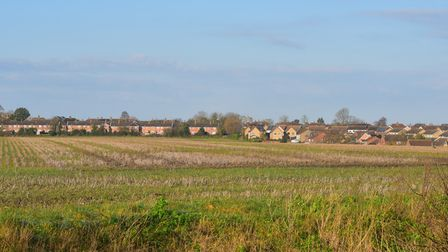 The proposed site for housing off Ellough Road in Worlingham near Beccles. Picture: Nick Butcher.